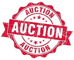 11th Annual HEAR Foundation Holiday Fundraiser – Live Auction Shopping List